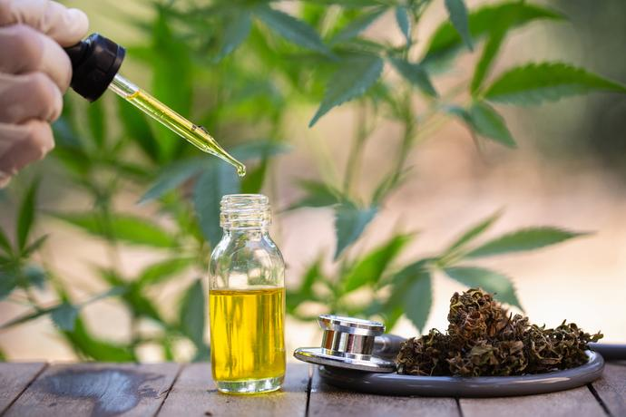 CBD France, purchase of legal herbs